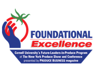 foundational-excellence-logo